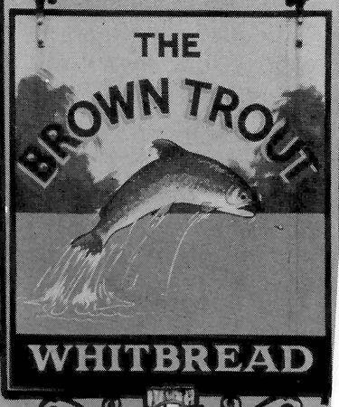 Brown Trout sign 1987