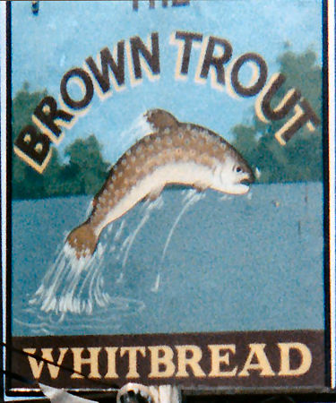 Brown Trout sign 1986
